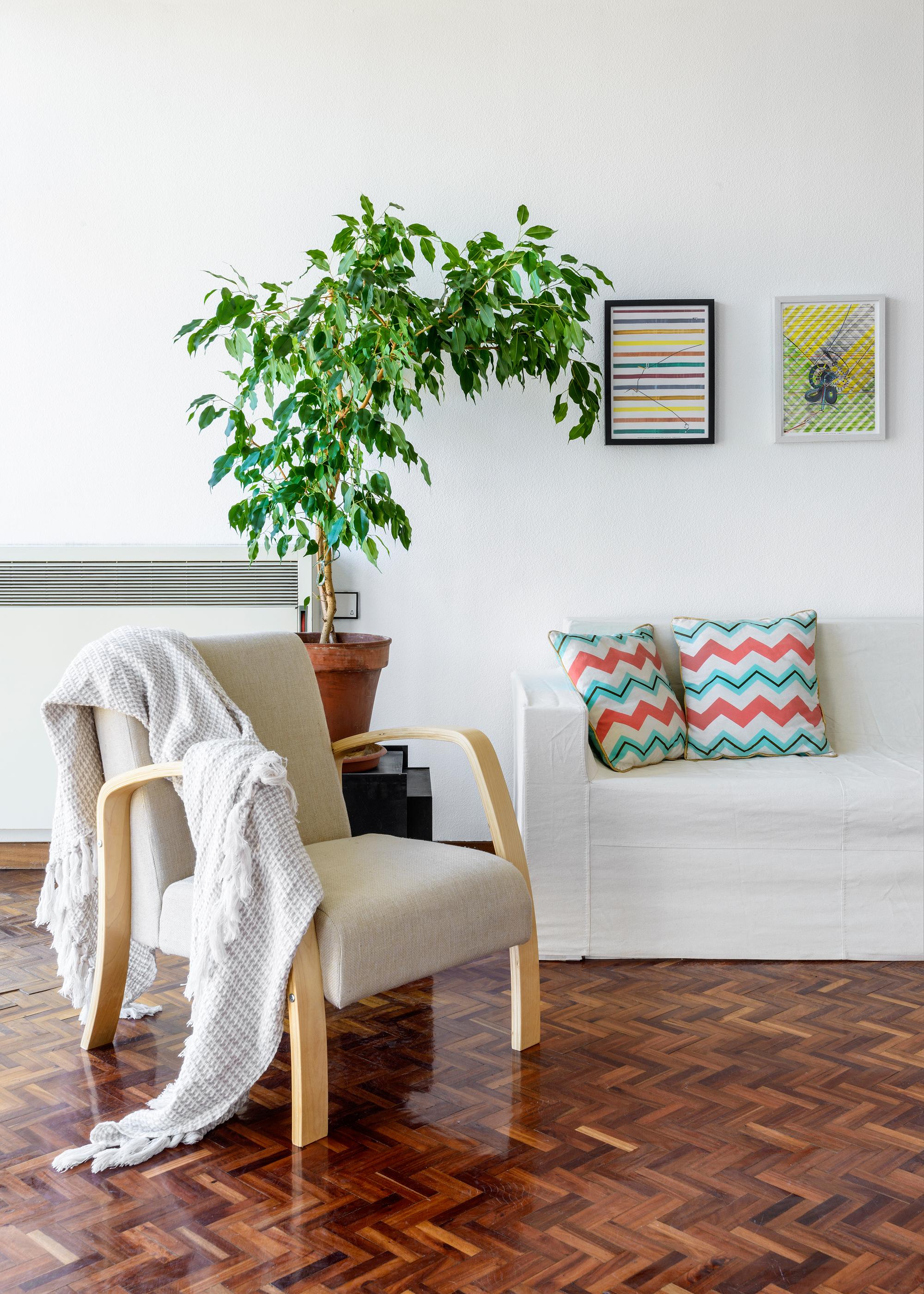 Pamplona_Singular_ casas a punto Home Staging